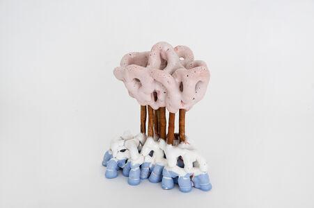 Pink Cloud 1613