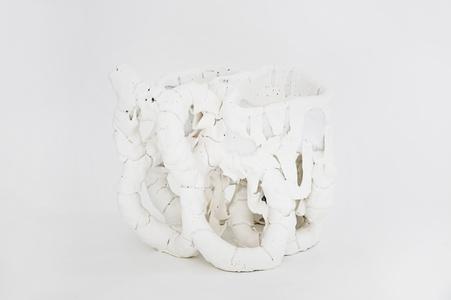 White Species n1601