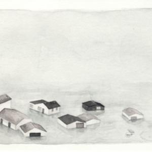 Floodplains (v)