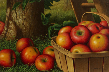 Still Life with Apples, Ladder and Tree