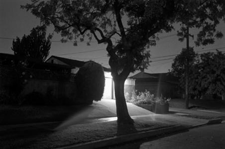 Night Walk No. 45