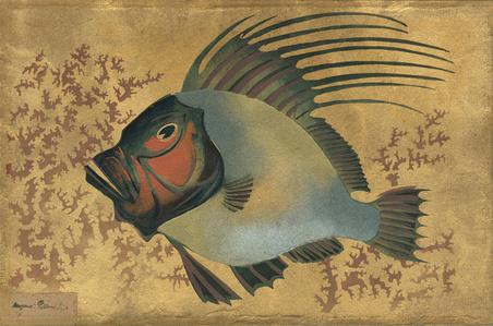 Poisson Multicolore