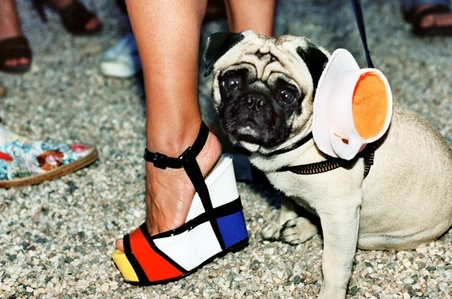 Mondrian Teacup Pug (Watermill Center Benefit, Watermill)