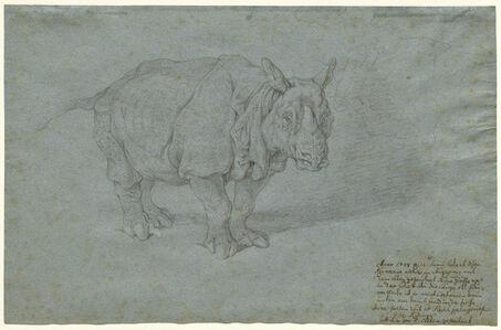 "The Rhinoceros ""Miss Clara"""