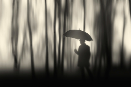 El bosque me inundó