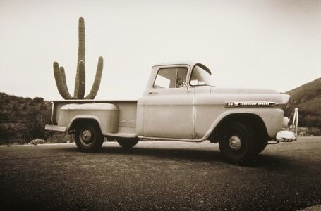 Cactus and Truck