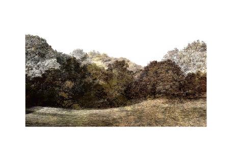 Trees & Keys - Mix 1.4, 4999 : Print
