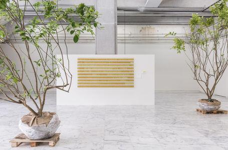 Five Hundred Lemon Tress : An Organic Archive