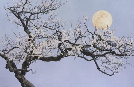 Blossom of Moonlight