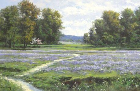 Lavender Flowers in Meadow