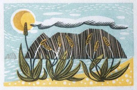 Sea Plantain