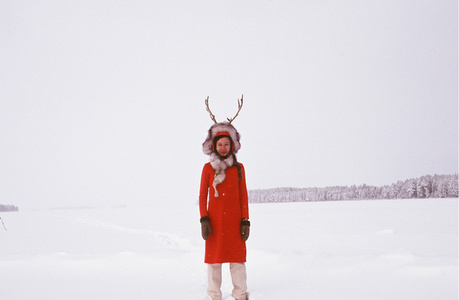 From the series Tundra