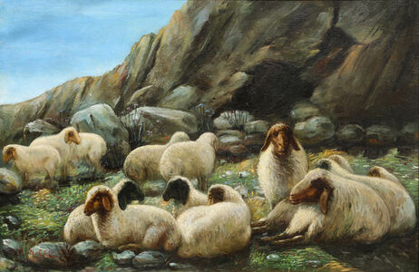 Untitled, (Sheep in the Fields)