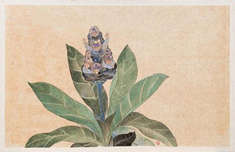 The Pot in Garden- Frangipani