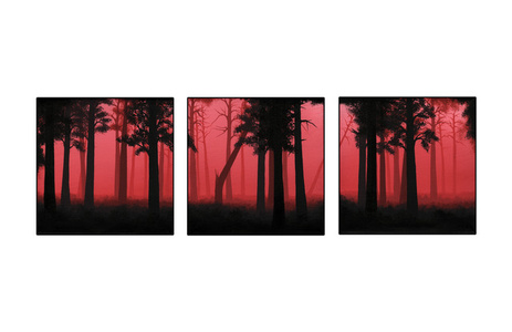 The Burning (Triptych)