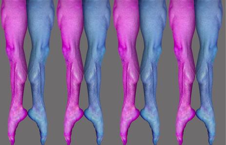 Lattice Legs, Dangling Legs