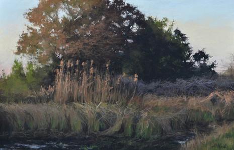 Late Evening Marsh Tree