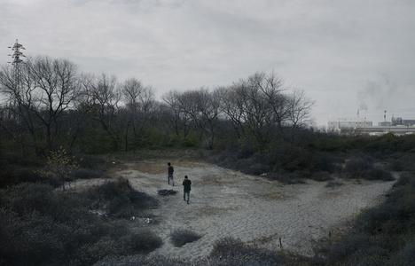Les bois de Calais