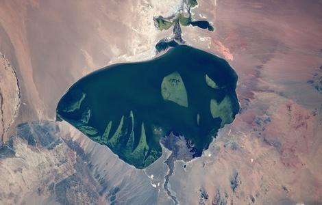 Mongolia, western region, Lake Har Us Nuur