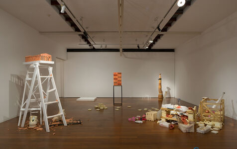 Hany Armanious, Cavities, Platforms, Footings: Selected Work 2007-2012