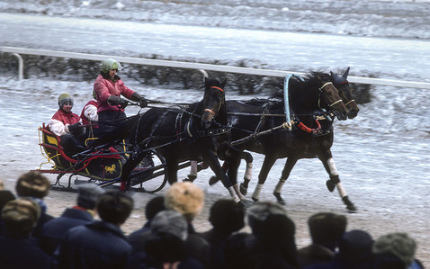 Sleigh racing at the Central Moscow Hippodrome, USSR