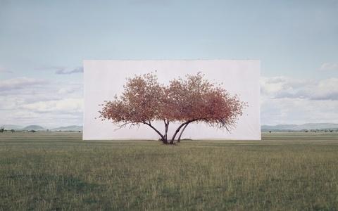 Tree...#2