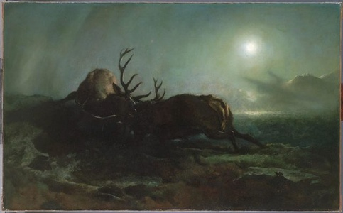 Night (Two Stags Battling by Moonlight)