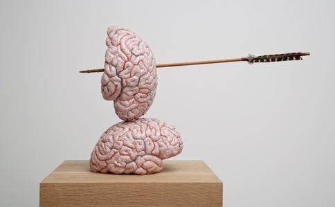 The brain as a heart