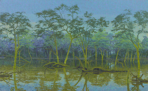 The Flooded Fever Tree Forest, Northern Kruger, South Africa