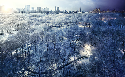 Central Park Snow, New York