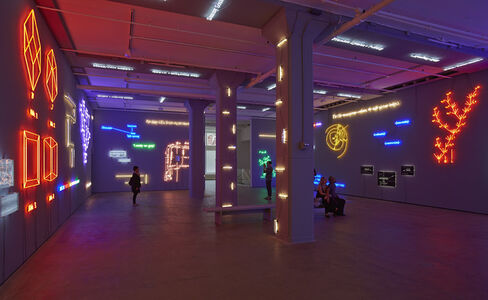 'Agnosia, an Illuminated Ontology' an Installation by Joseph Kosuth
