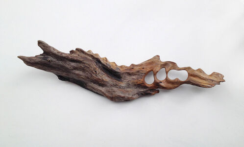 Untitled (Driftwood)
