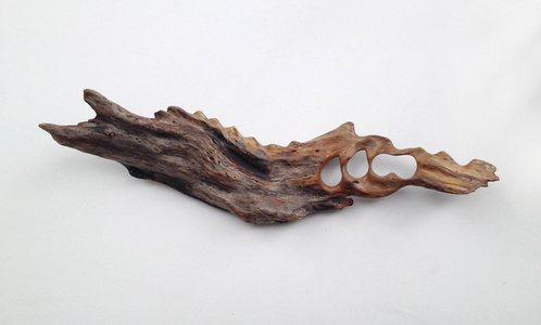 Untitled (Driftwood)
