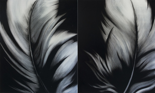Feathers (Diptych 72 x 60 each)
