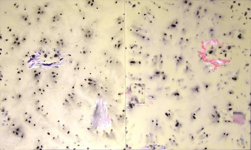 Particules de Mont Puget - 1995