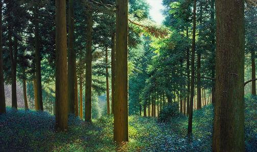 No 68 Silent Woods