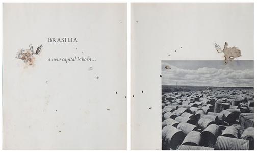 Estado Laico - after Peter Scheier e Harald Schultz (Díptico)