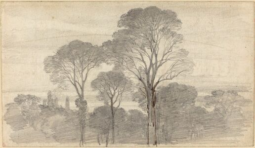 An Evening Landscape with Tall Trees