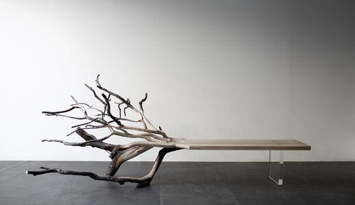 Fallen Tree bench