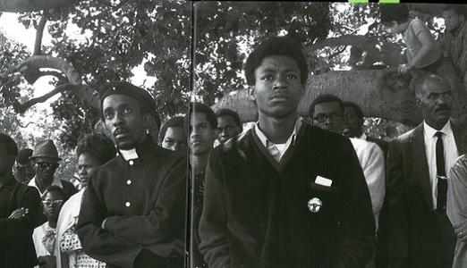 Audience, Free Huey Rally, at De Fremery Park, Oakland, CA