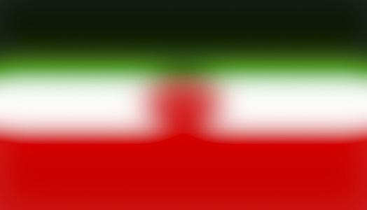 Flag #28