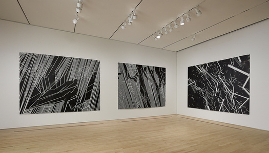 """Conflict Space 3, Installation view """"Field Conditions"""""""