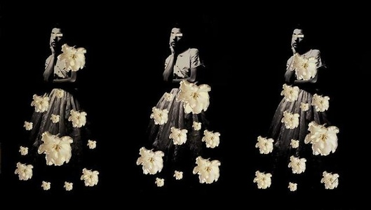 Carla ala Warhol