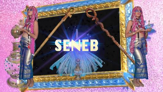 SENEB