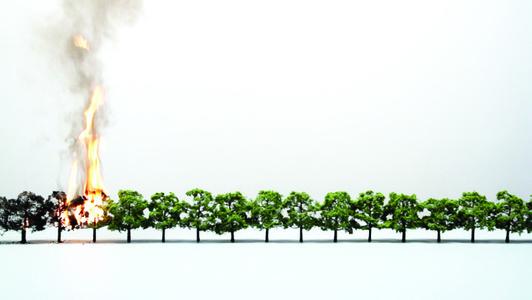 Tree/Line