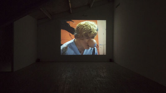Paul McCarthy: Innocence (Video Works 1970-2013)