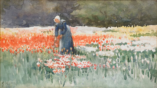 Dutch Tulip Field with Woman