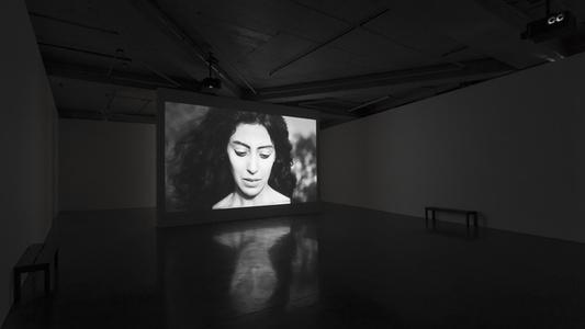 Shirin Neshat: Dreamers