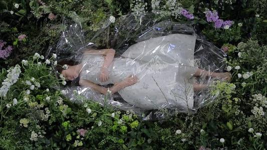 Sleeping Beauty 睡美人