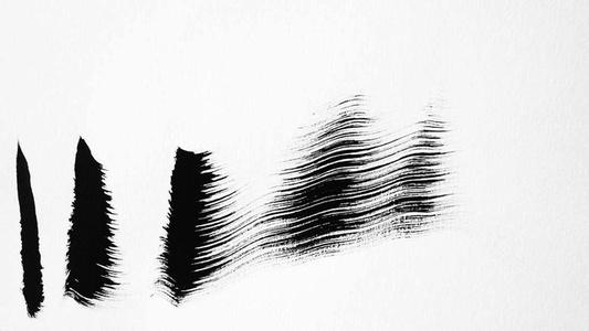 Zebra Drawing 4